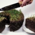 Показатели эффективности использования земли. Направления улучшения использования земли.
