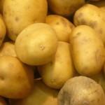 Экономика картофелеводства