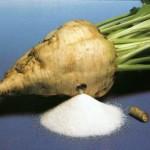 Экономика производства сахарной свеклы