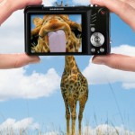 Креативная #reklama №313 — Фотоаппарат Samsung WB650: 15x Супер зум