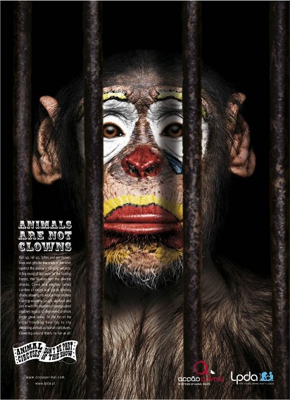 Реклама призывающая к хорошему обращению с животными
