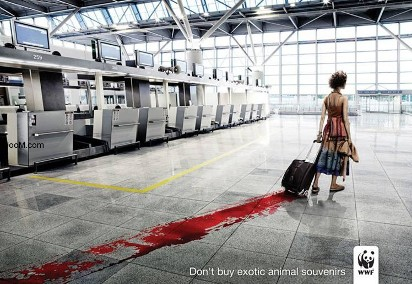 Социальная реклама: Не покупайте сувениры из экзотических животных