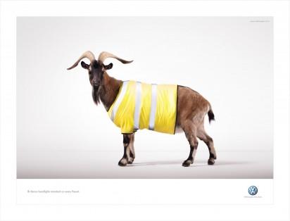 Биксеноновые фонари от Volkswagen