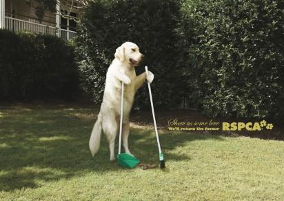 Собака убирает газон