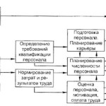 Факторы управления человеческими ресурсами