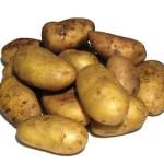 Уровень, тенденции в размещении и эффективности производства картофеля