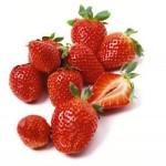 Пути повышения потенциала отечественных садов и ягодников, хранение и переработка плодов и ягод
