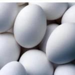 Совершенствование организационной структуры птицеводческих предприятий