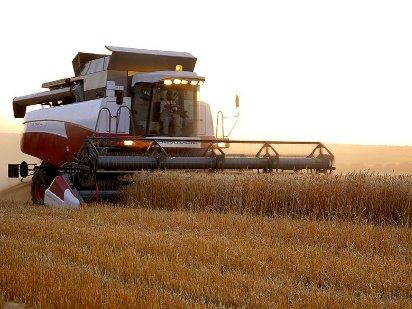 Сельское хозяйство как отрасль мировой экономики
