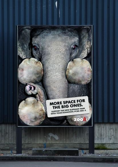 Помочь зоопарку