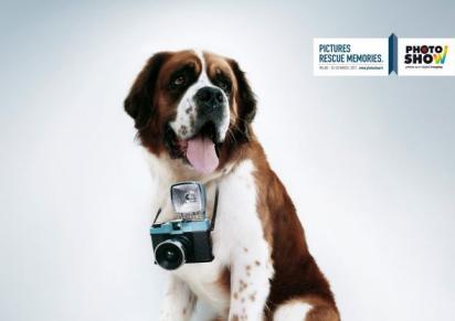 Реклама программы для обработки фотографий