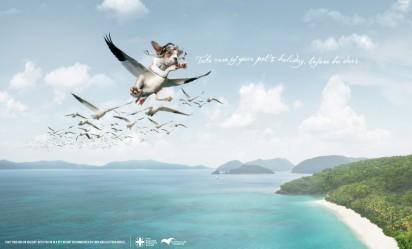 Летающая собака в рекламе