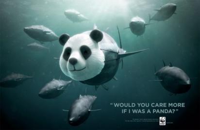 Реклама с пандой