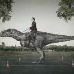 Креативная #reklama №1k514 — Школа вождения Motos