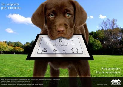 Реклама ветеринарной клиники Vetnil