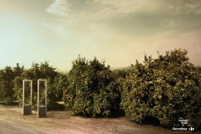 Реклама фруктов