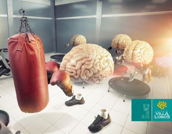 Тренеруй мозги