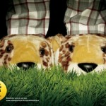 Креативная #reklama №1k733 — Зоопарк в Сан-Паулу теперь открыт и ночью