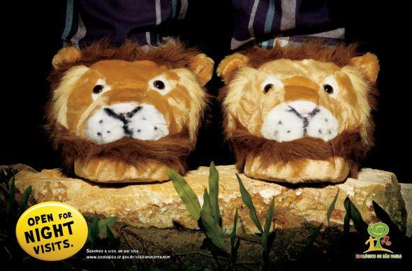 Красивая реклама зоопарка