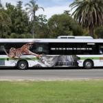Зоопарк Perth: Приходи в зоопарк или зоопарк придет к тебе