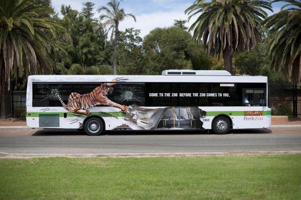Реклама зоопарка на автобусе