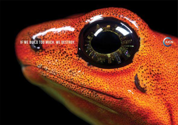 Реклама в защиту природы