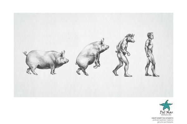 Не будь свиньей - худей