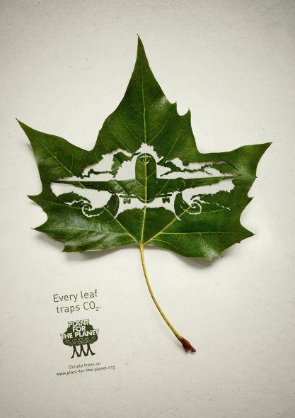 Реклама против вырубки деревьев