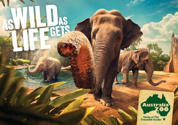 Лучший зоопарк Австралии