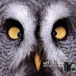 Мощный зум фотоаппарата Panasonic Lumix: Будь ближе