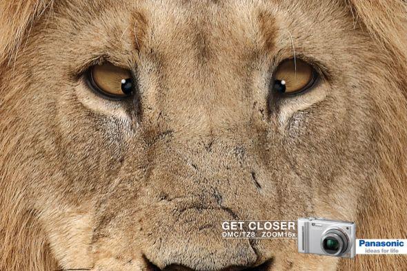 Реклама со львом