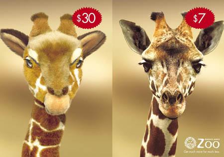 Дешевый вход в зоопарк